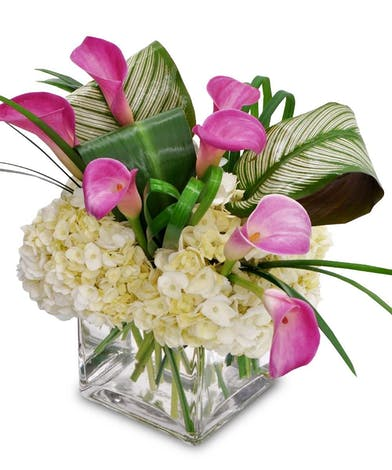 Pink calla lilies and greenery in a clear glass cube vase.