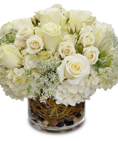 White roses, Queen Anne's Lace, and hydrangea in a cylinder vase.