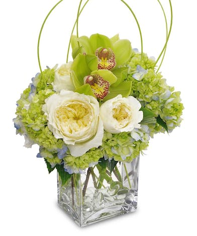 Blue hydrangea, orchids and roses in a clear glass cube vase.