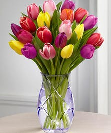 Yellow, purple and red tulips in a clear glass vase.
