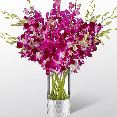 Purple Dendrobium Orchids and fuchsia Mokara Orchids in a clear glass vase.