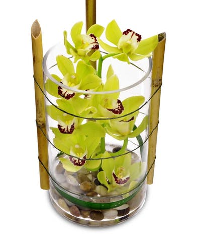 Green orchids in a cylinder vase accented with bamboo.