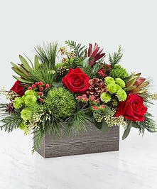 Wooden box filled with red and green flowers and winter greenery