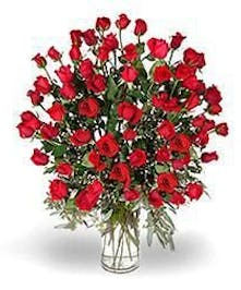 60 Hand selected red roses with assorted greens & filler, creates the most spectacular vase of roses imaginable.