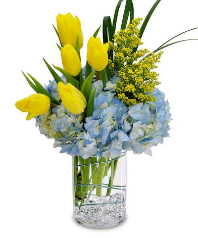 Tulips and hydrangea in a clear glass cylinder vase.