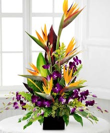 Birds of paradise, dendrobium orchids and greenery in a charming container.