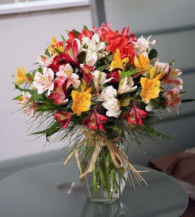 Blooming Peruvian lilies in various colors in a clear glass vase.