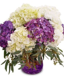 White and purple hydrangeas with seeded eucalyptus in a clear glass vase with purple gems.