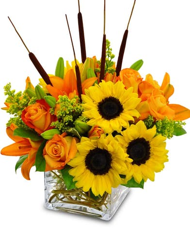 Sunflowers, orange roses and lilies, and cattails in a clear glass cube vase.