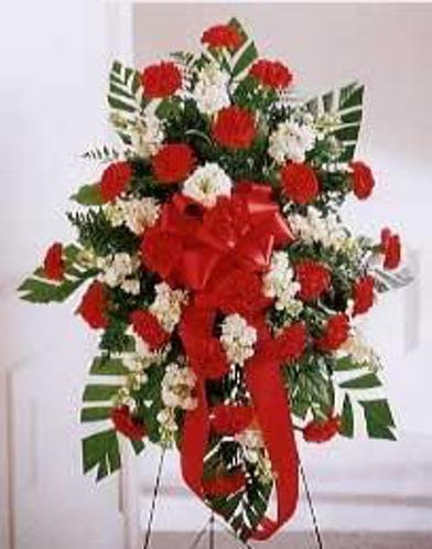 Traditional sympathy spray of red carnations and white stock with greenery.