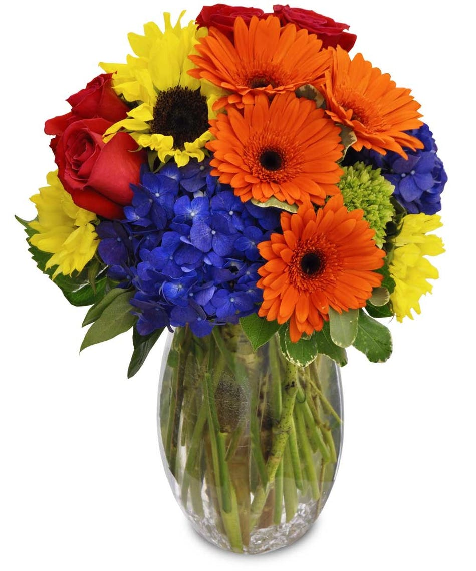 Summertime splash daisies hydrangea roses sunflowers orange blue coral and yellow flowers in a clear glass vase mightylinksfo