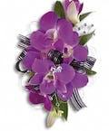 Purple Promise