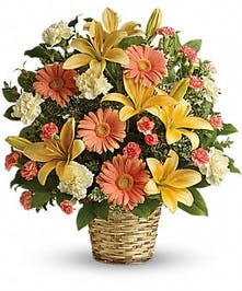 Sympathy basket of peach lilies, peach gerberas and creme carnations.