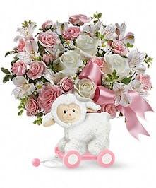 Sweet Little Lamb Pink