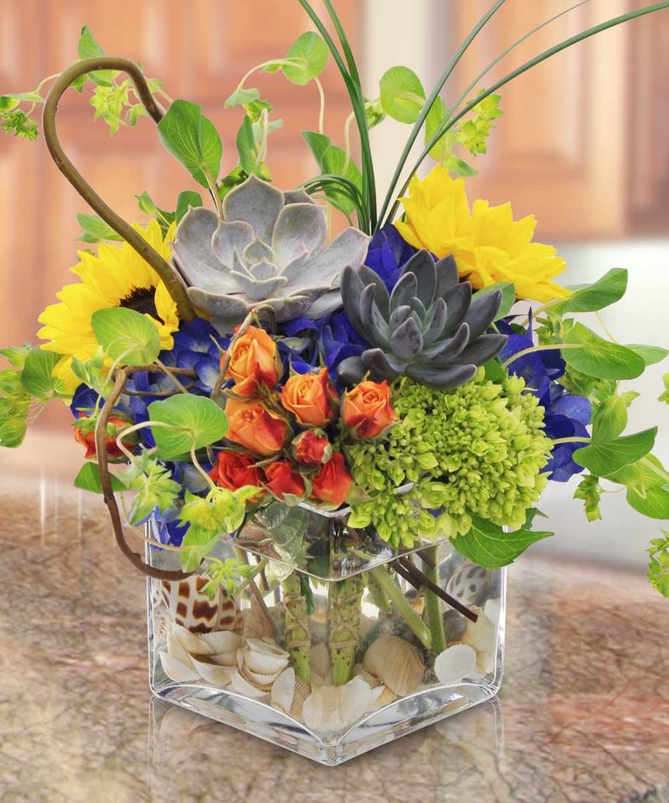Green and blue hydrangea, sunflowers, orange spray roses and Echeveria succulents atop a collection of seashells in a clear cube.