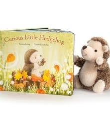 Hedgehog plush toy and children's story book.