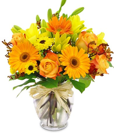 An autumn field. Gerbera daisies, roses, and lilies in shades of orange, yellow lilies, Viking mums and kangaroo paw as well as fall leaves are gathered in a vase.