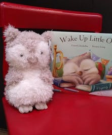 Plush owl toy and children's book.