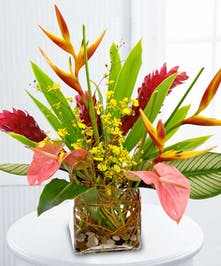 Ginger, heliconia, orchids, anthurium and greenery in a clear glass cube vase.