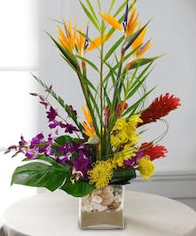 Orchids, birds of paradise, ginger, protea and other tropical flowers in a clear glass vase.