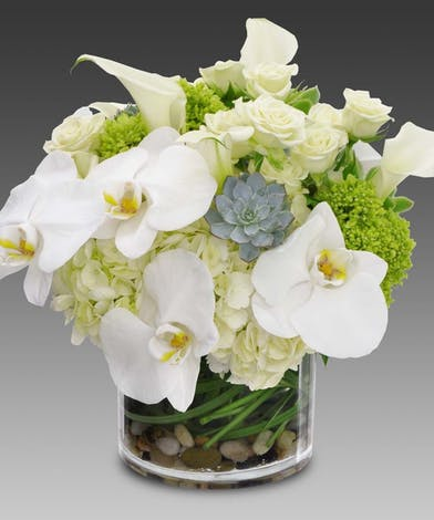 White roses, hydrangea, succulents and calla lilies in a glass cylinder vase.