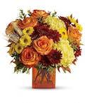 Autumn Expressions Premium