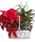 Basket of Christmas Cheer