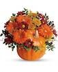Country Pumpkin Deluxe