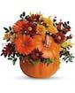 Country Pumpkin Standard
